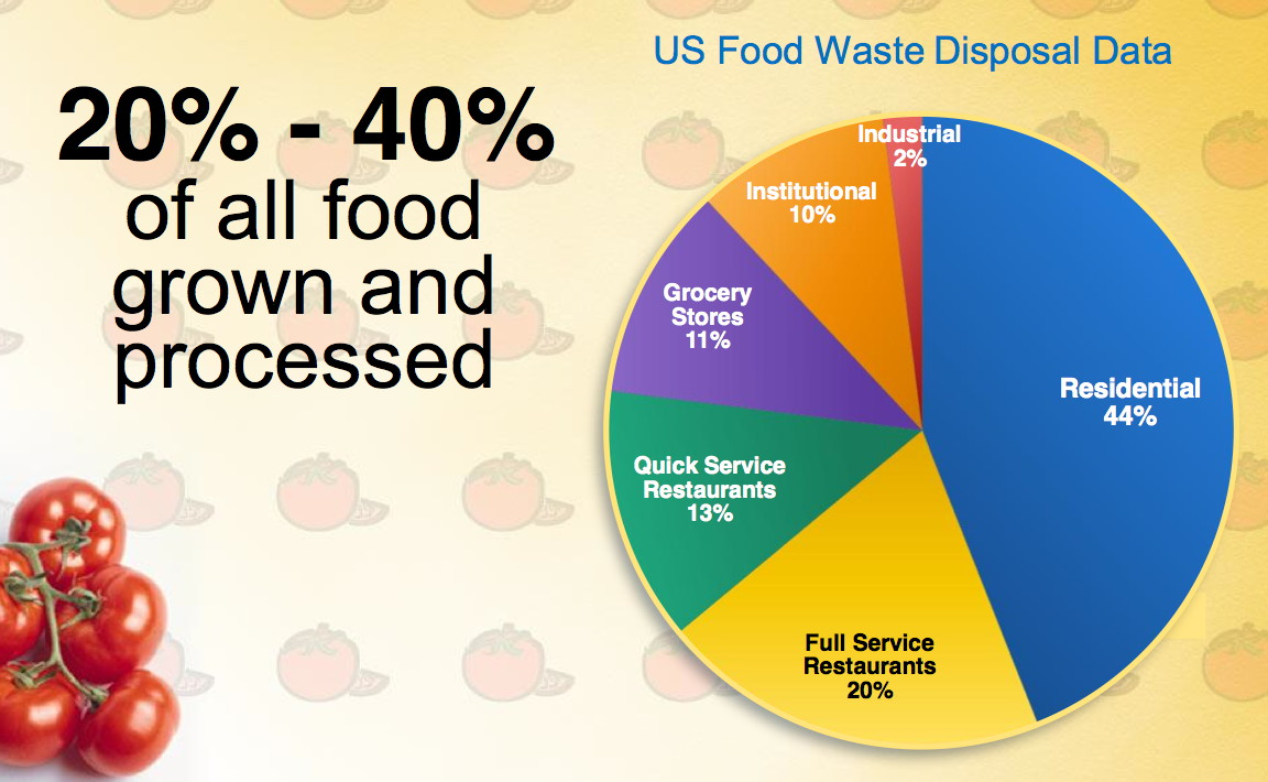 35 Ways to Stop Wasting FoodWasting Food